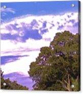 05222012003 Acrylic Print