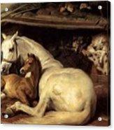 10234 Edwin Henry Landseer Acrylic Print