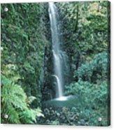 1b6351 Diamond A Waterfall Acrylic Print