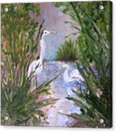 2 Herons In Hiding Acrylic Print
