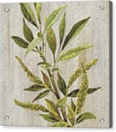 3d Wild Flower Painting Acrylic Print