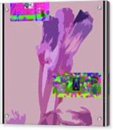 5-21-2015babcd Acrylic Print