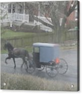 A Buggy Passes By Acrylic Print