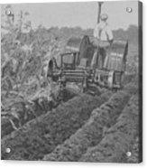 A Farmer Driving A Tractor Acrylic Print