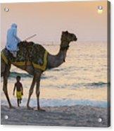 Little Boy Stares In Amazement At A Camel Riding On Marina Beach In Dubai, United Arab Emirates -  Acrylic Print