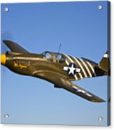 A P-51a Mustang In Flight Acrylic Print
