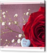 A Rose For Valentine's Day - 2 Acrylic Print