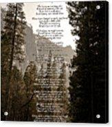 A Walk Among The Trees Acrylic Print