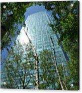 Above The Tree Tops Acrylic Print