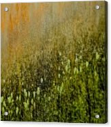 Abstract Spring Acrylic Print