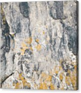 Abstract Texture Old Plaster Acrylic Print