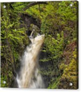 Aira Force Acrylic Print