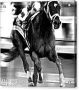 Always Dreaming, Johnny Velasquez, 143rd Kentucky Derby Acrylic Print
