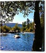 American River Through The Trees Acrylic Print