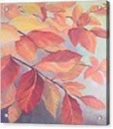 Among The Leaves Acrylic Print