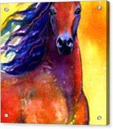 Arabian Horse 1 Painting Acrylic Print by Svetlana Novikova