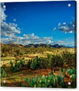 Arizona Sunrise 8 Acrylic Print