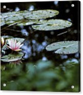 At Claude Monet's Water Garden 6 Acrylic Print