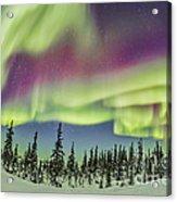 Aurora Borealis Over Churchill Acrylic Print