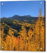 Autumn Bonfire Acrylic Print