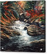 Autumn Brook Acrylic Print