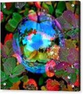 Autumn Bubble Acrylic Print