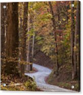 Autumn Drive Acrylic Print