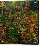 Autumn Hillside Blue Ridge Parkway Acrylic Print