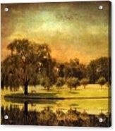 Autumns Golden Mirror Acrylic Print