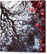 Autumn Reflections II Acrylic Print by Artecco Fine Art Photography