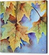 Autumn Splendor Acrylic Print by Bobbi Price