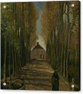 Avenue Of Poplars In Autumn Nuenen, October 1884 Vincent Van Gogh 1853 - 1890 Acrylic Print