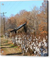 Back Roads Of Ms Acrylic Print