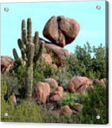 Balancing Act In The Arizona Desert 2 Acrylic Print