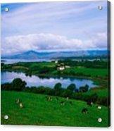 Bantry Bay, Co Cork, Ireland Acrylic Print by The Irish Image Collection