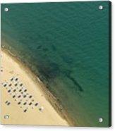 Beach Along Lake Michigan Acrylic Print