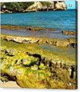 Beach At Dominican Republic Acrylic Print
