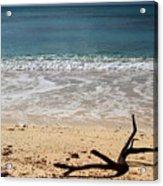 Beach At Grand Turk Acrylic Print