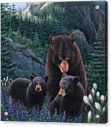 Bears On Snow Peak Painting Acrylic Print