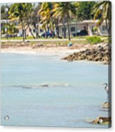 Beautiful Beach And Ocean Scenes In Florida Keys Acrylic Print