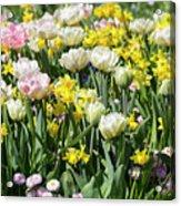 Beautiful Spring Flowers Acrylic Print