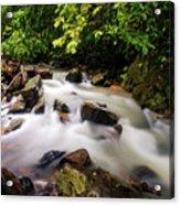 Beautiful Stream In Western Ghats Acrylic Print