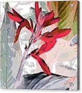Bird Of Paradise 5 Acrylic Print