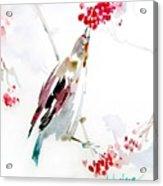 Bird Painting Acrylic Print