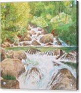 Bishop Creek South Fork Acrylic Print by Charles Hetenyi