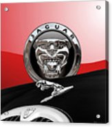 Black Jaguar - Hood Ornaments And 3 D Badge On Red Acrylic Print