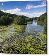 Black River Hancza In Turtul.  Acrylic Print