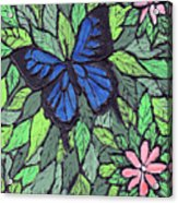Blue Butterfly Two Acrylic Print