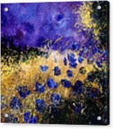 Blue Cornflowers Acrylic Print by Pol Ledent