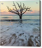 Botany Bay Morning Acrylic Print